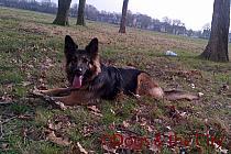 Redbridge-20120314-00087 copy.jpg