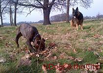 Redbridge-20120314-00090 copy.jpg